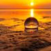 201905 Seabrook Island-02564.jpg