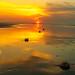 201905 Seabrook Island-02551.jpg