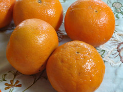 Clementines (dccradio) Tags: mountairy mtairy md maryland frederickcounty indoor indoors inside summer tuesday tuesdayafternoon afternoon goodafternoon canon powershot elph 520hs orange oranges clementines
