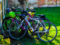 2019_Reading_Ale_Trail_CAMRA_2019_M02_D23_h17_m33_s26 (James Hyndman) Tags: 2019aletrail 2019readingaletrail cycling pubs berkshire readingmidberkscamra beercycling beercycle moosehead mooseheads readingmidberkshirecamra reading realale realaletrail aletrail camra readingrealaletrail readingaletrail campaignforrealale