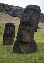 Rano Raraku Moai (Michael Burke Images) Tags: moai ranoraraku easterisland chile