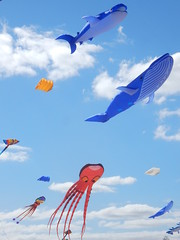 Shark and Whale (mikecogh) Tags: semaphore kites wind kitefestival shark whale octopus