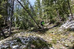 7H3A2501 (boysoccer3) Tags: idaho sawtooths sawtooth mountains hiking backpacking backcountry utah wyoming colorado uintas grandtetonnationalpark