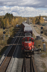The Edson Switcher (Trevor Sokolan) Tags: local switcher edsonsub edson gp9 gp9rm chopped emd gmd gm generalmotors freight alberta ab signal signals trains train trainspotting tracks track railway railroad railfan rail railfanning canadian canada cn cnr canadiannational