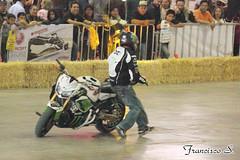 SIM2014 0094 (Pancho S) Tags: salóninternacionaldelamotocicleta2014 sim2014 expo expos exposantafe acrobacias motos motocicletas motorcycle motocycle