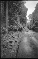 single lane roadway, curvy, group of stones, Lakey Gap Heights, Black Mountain, NC, Olympus XA, Foma Retropan 320, HC-110 developer, 6.10.19 (steve aimone) Tags: roadway road singlelane stones pavement lakeygapheights blackmountain northcarolina olympusxa fomaretropan320 hc110developer 35mm 35mmfilm film blackandwhite monochrome monochromatic landscape