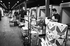 San Francisco Wholesale Produce Market (vhines200) Tags: sanfrancisco 2019 producemarket leica foodchain distribution wholesale smallbusiness worker infrastructure bayview whilewesleep