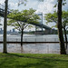 Flooding in Astoria Park, NYC