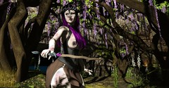 Fractured Fairytale (Miru in SL) Tags: secondlife sl fantasy event midsummer enchantment warrior princess deadly nightshade escalated enchanted forest tagus