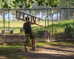 Pickup Truck (Michael Burke Images) Tags: spring tortuguero bicycling ladder costarica