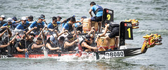 D5X_0534 (footeefok) Tags: singapore dragonboat marinabay watersports sports peoples water boats drums dbs dbsmarinaregatta dragonboatrace race