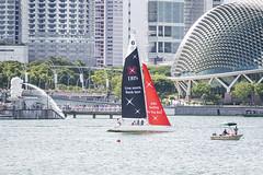 D5X_0993 (footeefok) Tags: singapore dragonboat marinabay watersports sports peoples water boats drums dbs dbsmarinaregatta dragonboatrace race