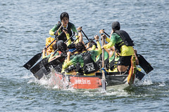 D5X_0893 (footeefok) Tags: singapore dragonboat marinabay watersports sports peoples water boats drums dbs dbsmarinaregatta dragonboatrace race