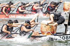 D5X_0642 (footeefok) Tags: singapore dragonboat marinabay watersports sports peoples water boats drums dbs dbsmarinaregatta dragonboatrace race