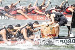 D5X_0626 (footeefok) Tags: singapore dragonboat marinabay watersports sports peoples water boats drums dbs dbsmarinaregatta dragonboatrace race