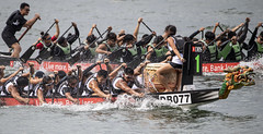 D5X_1308 (footeefok) Tags: singapore dragonboat marinabay watersports sports peoples water boats drums dbs dbsmarinaregatta dragonboatrace race