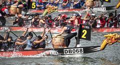 D5X_1152 (footeefok) Tags: singapore dragonboat marinabay watersports sports peoples water boats drums dbs dbsmarinaregatta dragonboatrace race