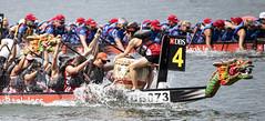 D5X_1101 (footeefok) Tags: singapore dragonboat marinabay watersports sports peoples water boats drums dbs dbsmarinaregatta dragonboatrace race