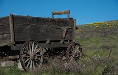 Old Wagon (Michael Burke Images) Tags: columbiagorge spring wa wagon columbiahillsstatepark balsamroot