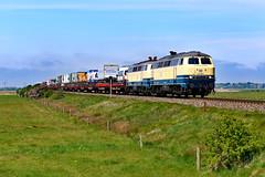 RP 218 490 Archsum (2131n) (christophschneider1) Tags: kbs130 marschbahn archsum sylt nordfriesland schleswigholstein railsystemrpgmbh rp railsystemrp leihlok tandem doppeltraktion deutschebahn db syltshuttle autotransport lkw 218 218490 ozeanblaubeige d850