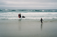 Family surf (bingley0522) Tags: contaxiia carlzeissbiogon35mmf28 portra400 pacificgrove pacificocean montereycounty surf beach autaut