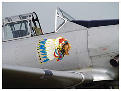 Seminole. (Aerofossile2012) Tags: t6 seminole noseart meaux esbly meeting airshow 2018