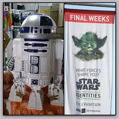 R2 D2 and Yoda/ Star Wars (Gillian Everett) Tags: r2d2 yoda exhibition garden ornament duc 1117 wars star