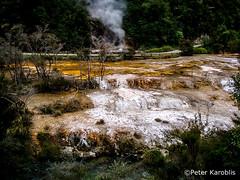 New Zealand - Rotorua (peterkaroblis) Tags: newzealand neuseeland rotorua geothermie hotsprings