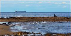 Shipwatching (Ggreybeard) Tags: shipping tanker sandonpoint bulli nsw shoreline sea ocean rocks ship person boat