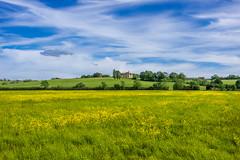 Houghton House and buttercups, Bedfordshire (Ken Barley) Tags: ampthill bedfordshire buttercups greensand houghtonhouse housebeautiful johnbunyan pilgrimsprogress