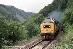 c.07/1987 - Pass of Brander, Taynuilt, Scotland (53A Models) Tags: britishrail class37 37405 strathclyderegion diesel scotland train railway locomotive railroad passofbrander taynuilt