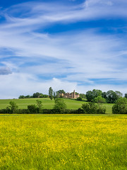 Photo of Houghton House and buttercups, Bedfordshire