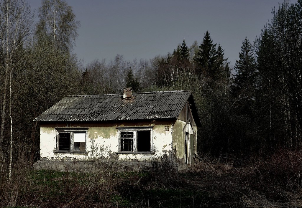 фото: the abandoned house in the forest