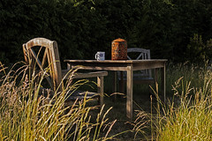 Morning Coffee (Paulie-W) Tags: morning summer sunshine coffee garden tableandchairs