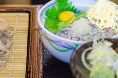 RAW_IMGP4817 (kirinoa) Tags: 日本 神奈川県 鎌倉市 紫陽花 藤沢市