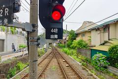 RAW_IMGP4851 (kirinoa) Tags: 鎌倉市 神奈川県 日本 藤沢市 紫陽花