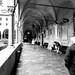 Basilica del Santo: Chiostro della magnolia