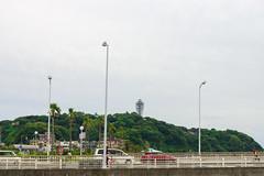 RAW_IMGP4852 (kirinoa) Tags: 藤沢市 神奈川県 日本 鎌倉市 紫陽花