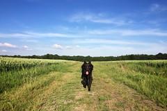 happiness 🐺 (Jos Mecklenfeld) Tags: landschap landscape hond dog herdershond herder shepherddog shepherd hollandseherder dutchshepherd totoro