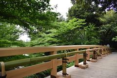 Tokugawa Garden 0759 (lorindadixon) Tags: aichi nagoya japan nature garden nagakute studyabroad personal nufs tokugawa tokugawaen travel ysu park