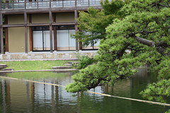 Tokugawa Garden 0019 (lorindadixon) Tags: aichi nagoya japan nature garden nagakute studyabroad personal nufs tokugawa tokugawaen travel ysu park