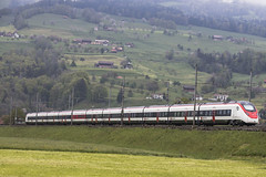 CH SBB Giruno Steinen 29-04-2019 (peters452002) Tags: peters452002 eisenbahn etrain railways railway railroad railroads rail trains train trein treinen twop travel transportation spoor spoorwegen switserland swiss schweiz sbbcffffs sbb ferrovia ffs jalalspagestransportationalbum clickcamera ch cff bahn stadler zwitserland
