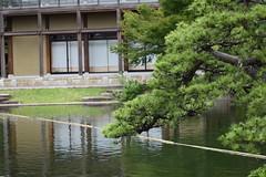 Tokugawa Garden 0017 (lorindadixon) Tags: aichi nagoya japan nature garden nagakute studyabroad personal nufs tokugawa tokugawaen travel ysu park