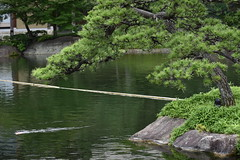 Tokugawa Garden 0015 (lorindadixon) Tags: aichi nagoya japan nature garden nagakute studyabroad personal nufs tokugawa tokugawaen travel ysu park