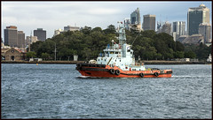 Sydney TL Cook Sydney Harbour-1= (Sheba_Also 15.6 Million Views) Tags: sydney tl cook harbour