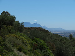 Hottentots Mountains (Toni Kaarttinen) Tags: southafrica africa cape capetown travel travelling holiday wanderlust westerncape wine winelands stellenbosch mountain mountains winehouse