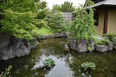 Tokugawa Garden 0758 (lorindadixon) Tags: aichi nagoya japan nature garden nagakute studyabroad personal nufs tokugawa tokugawaen travel ysu park
