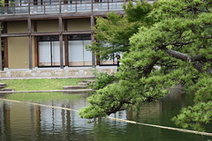 Tokugawa Garden 0020 (lorindadixon) Tags: aichi nagoya japan nature garden nagakute studyabroad personal nufs tokugawa tokugawaen travel ysu park