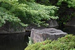 Tokugawa Garden 0005 (lorindadixon) Tags: aichi nagoya japan nature garden nagakute studyabroad personal nufs tokugawa tokugawaen travel ysu park