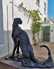 Stellenbosch (Toni Kaarttinen) Tags: southafrica africa cape capetown travel travelling holiday wanderlust westerncape wine winelands stellenbosch statue cheetah